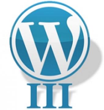 WordPress 3 ist da