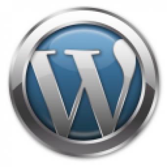 wp-logo2