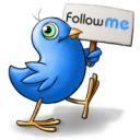 Twitter Bird Follow