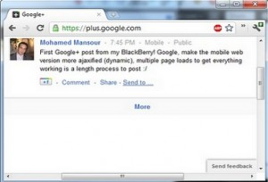 Extended Share for Google Plus