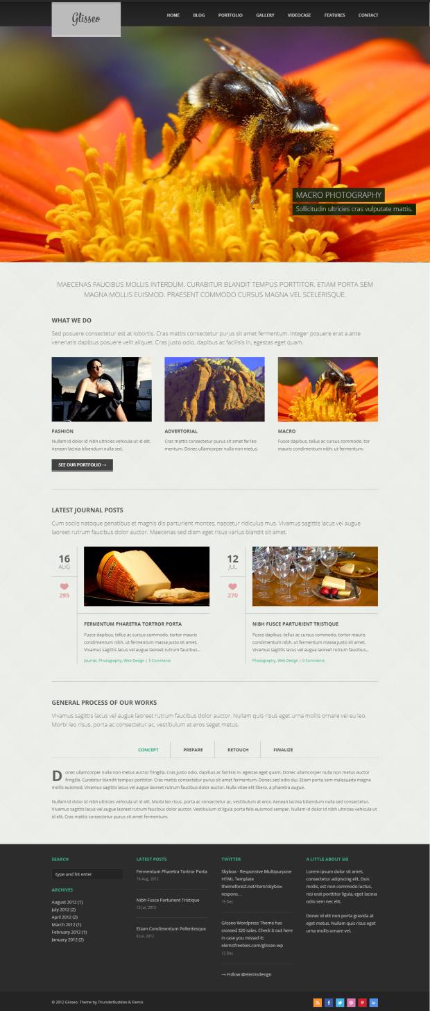 Eine der vielen Layout Möglichkeiten des Glisseo WordPress Theme