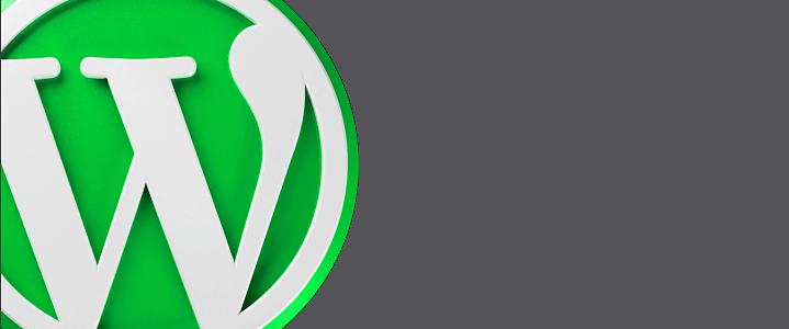 WordPess SEO