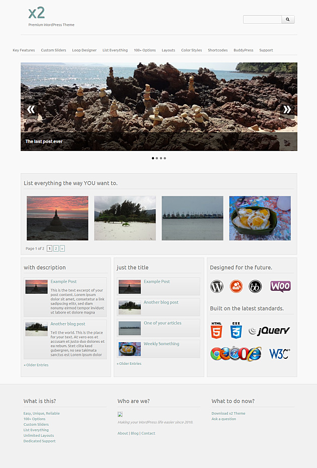 Das x2 Theme mit hellem Skin (Layout Widget Homepage)