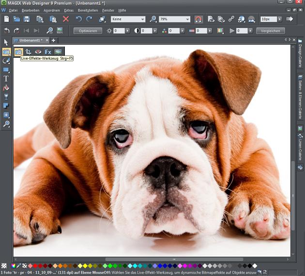 Magix Bildbearbeitungs- Modus