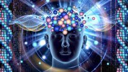 Künstliche Intelligenz: Bitkom veranstaltet erstmals AI Summit am 1. März